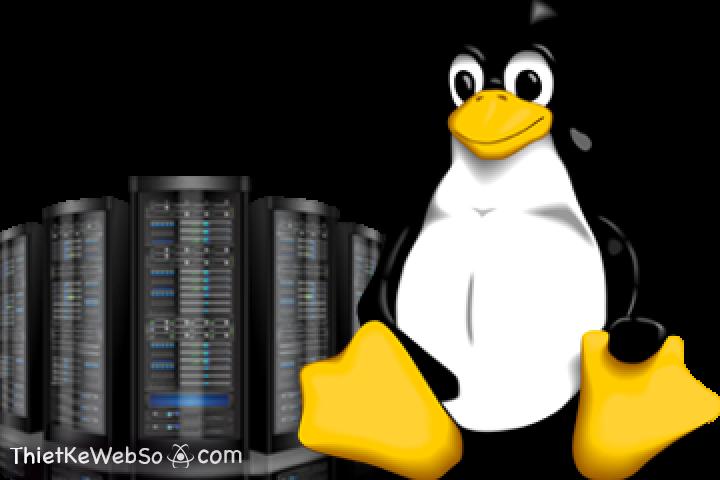 Tìm hiểu về hosting Linux