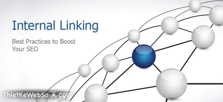 Tìm hiểu về các loại link trong SEO website và vai trò của chúng