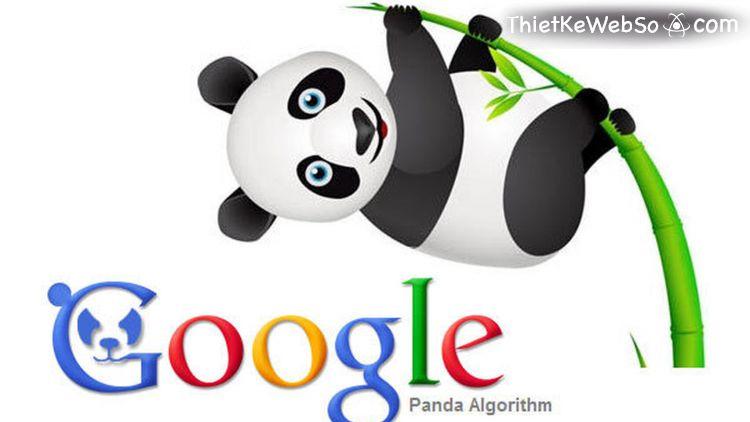 Những thuật toán của Google đối với SEO