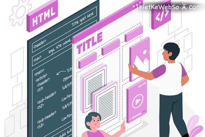 Module website là gì?